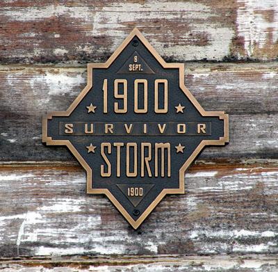 Storm survivor
